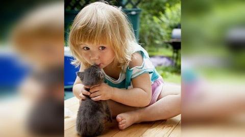 22.-Mascotas-y-Bebes-0.jpg
