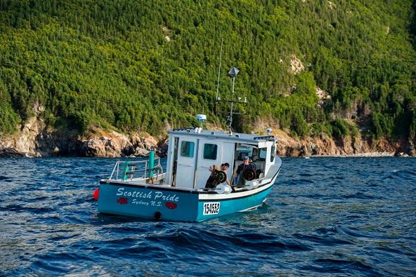 24 Pescadores Historia 1