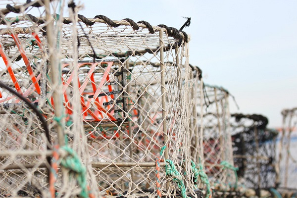 24 Pescadores Historia 5