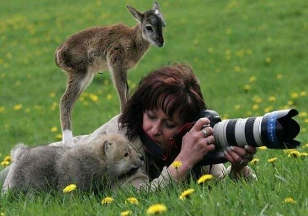 21 Renov Animales Fotos 21