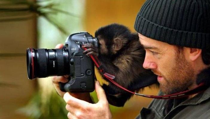 21 Renov Animales Fotos 29
