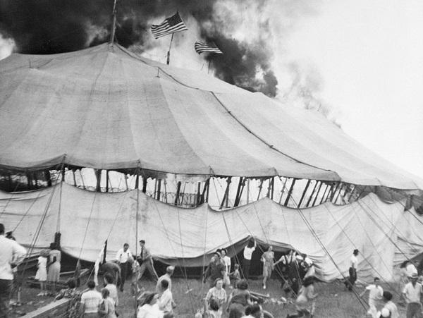 6 Circos 19