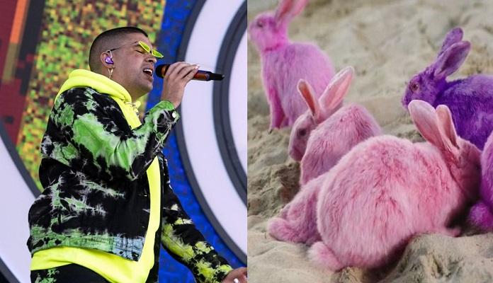 9 Bad Bunny 14