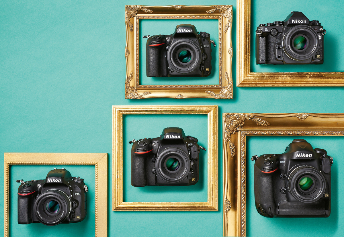 A selection of Nikon FX-format digital SLR cameras hang within golden frames.