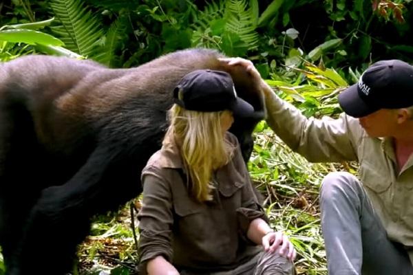 25 Gorilas Mujer 14