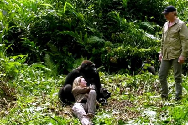 25 Gorilas Mujer 16