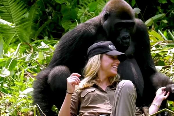 25 Gorilas Mujer 17