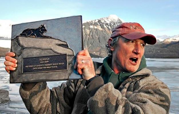 07 Lobo Comunidad Alaska 16