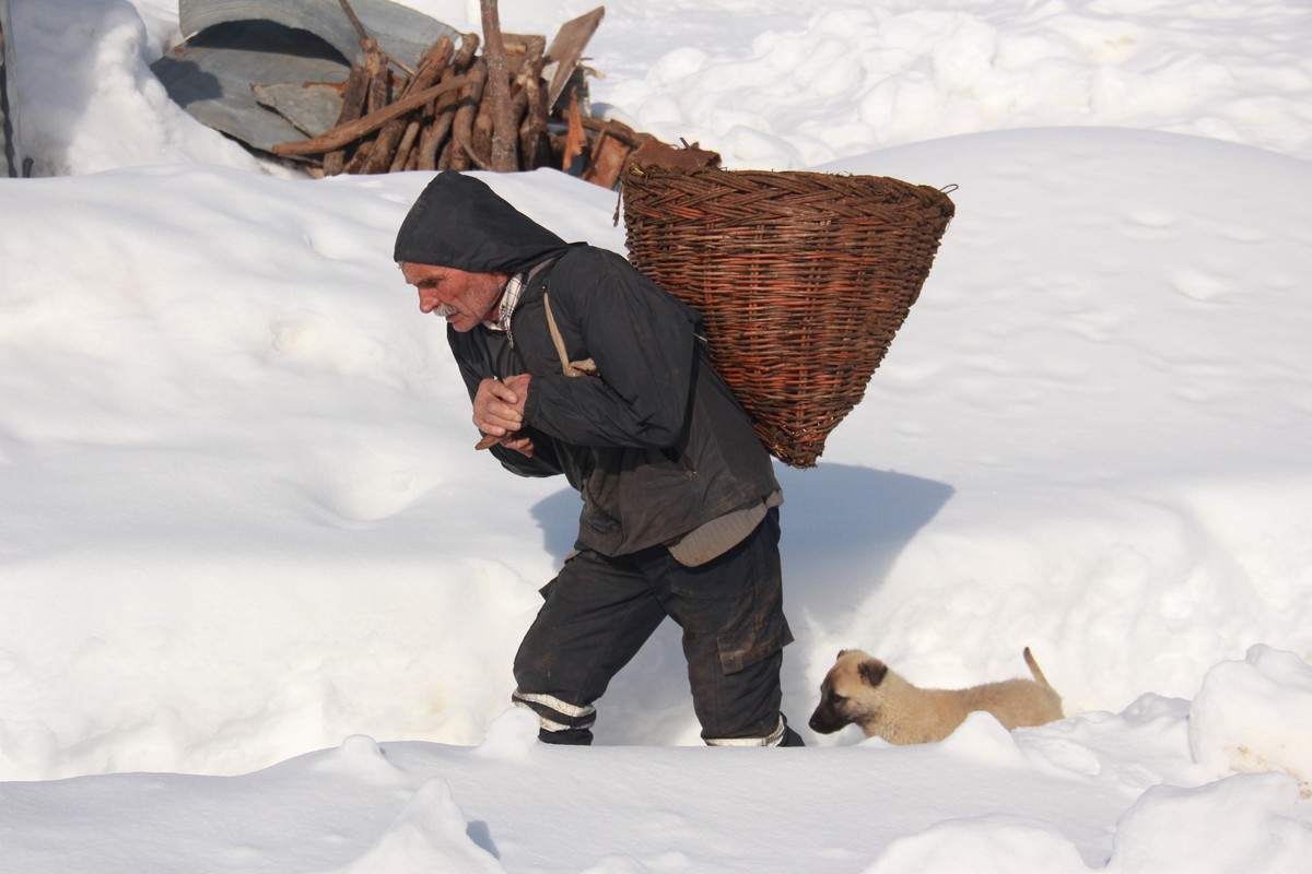 A man carries a basket after snowfall as he walks with a dog.