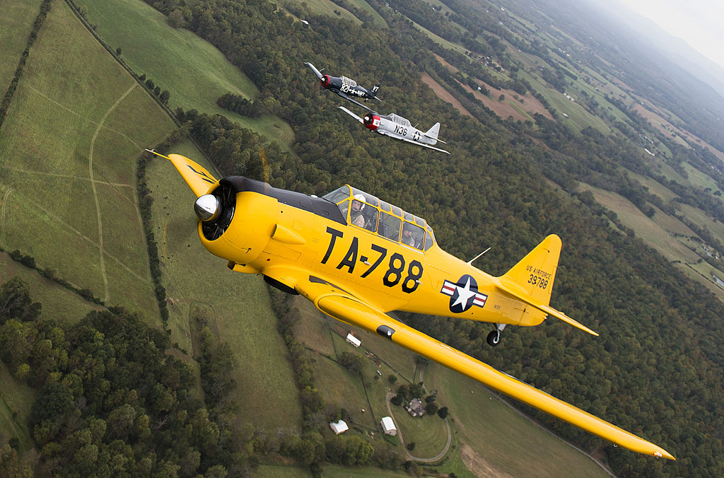 a yellow T-6-184055858