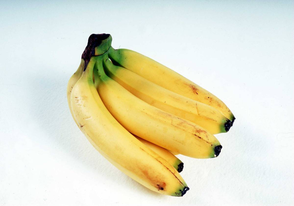 A ripe bunch of bananas is pictured.