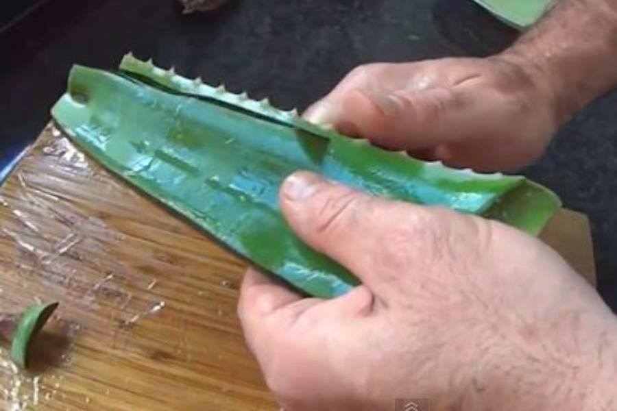 pnu-aloe-vera-wooden-board-cutting