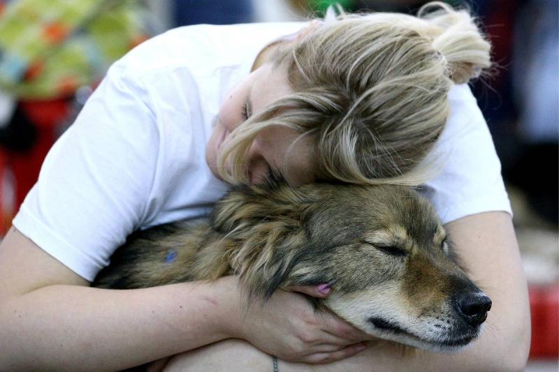 Pets long For Companionship