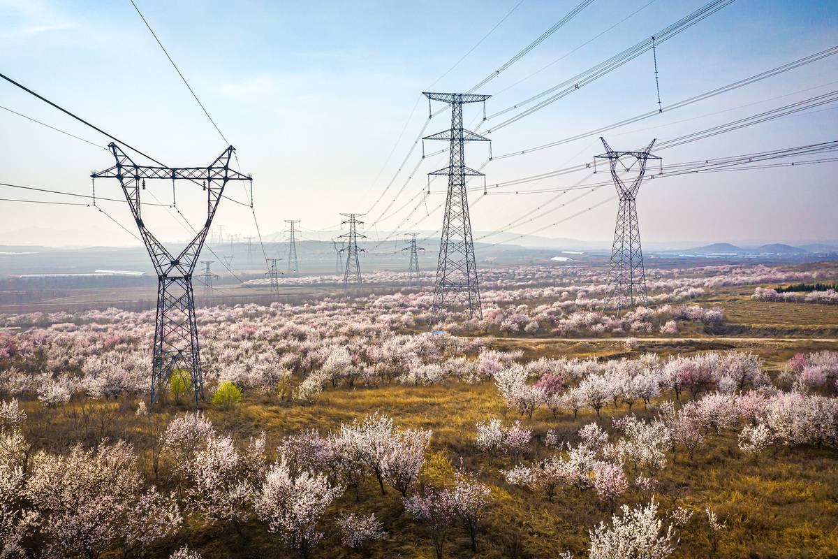 Transmitting Electric Without Losing Money Was Key