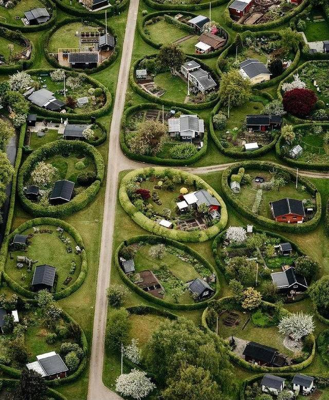 Properties enclosed by circular hedges in Denmark