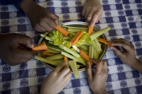 UK - Food - Organic food as part of school meals