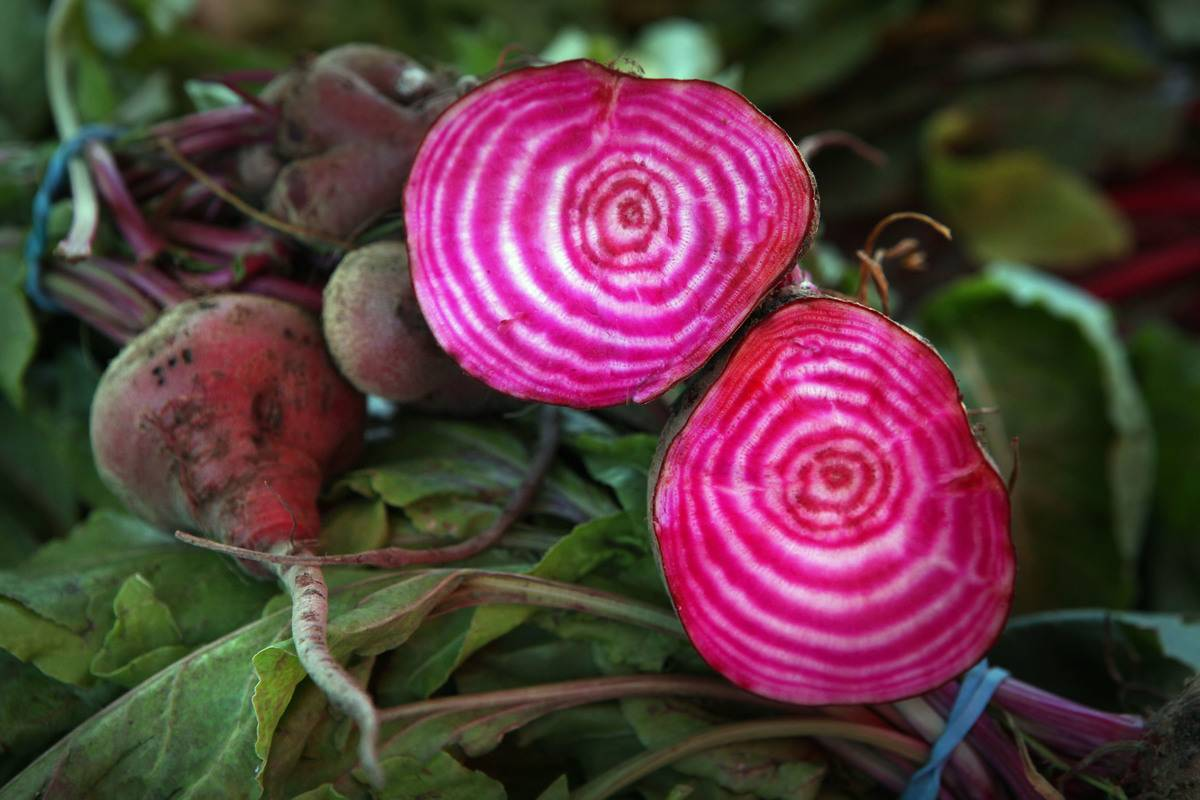 Chioga beets on sale at Stonestown Farmer's Market in San Francisco, California, on Sunday, May 20, 2012